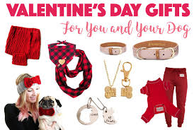 valentine day 2017 gifts valentine s day gifts for you and your dog the broke dog
