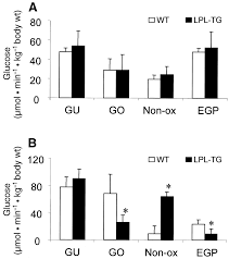 in muscle specific lipoprotein lipase overexpressing mice muscle