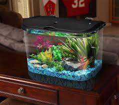 Aquarium Decoration Ideas Freshwater 10 Gallon Fish Tank Decoration Ideas Decorations Ideas Inspiring