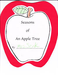 seasons of an apple tree kindergarten nana