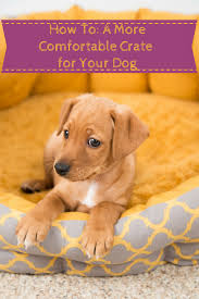 dog crate dog crate cover puppies pinterest crate how to make your dog s crate more comfortable in 6 easy steps