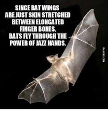 Bat Meme - 25 best memes about jazz hands meme jazz hands memes
