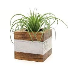 indoor herb garden planter box indoor herb garden container ideas