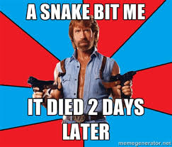 Chuck Norris Meme - the 23 most ridiculous chuck norris memes ever blazepress
