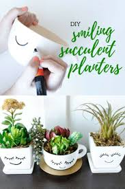 cute succulents 67 diy succulent planter ideas everyone can try planters plants
