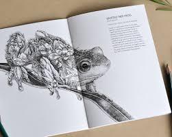 wild australia colouring book u2013 marini ferlazzo art for wildlife