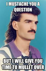 Guy With Mustache Meme - i mustache you a question but i will give you time to mullet over