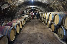schiller wine cellar tour and tasting at weingut august kesseler