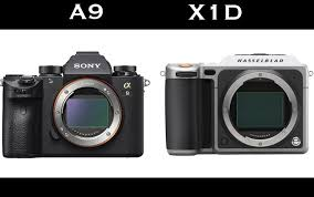 sony low light camera medium format vs 35mm sony a9 and hasselblad x1d shoot low light