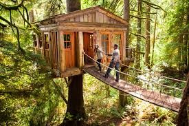 treehouse resort seattle home decorating interior design bath