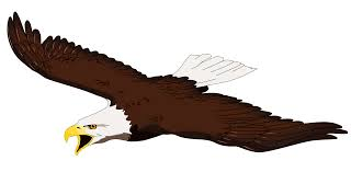 eagle sketches clipart cliparts and others art inspiration