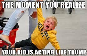 Tantrum Meme - my kid is acting like a spoiled trump meme on imgur
