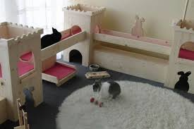 Indoor Hutches Rabbit Cages Archives Netherland Dwarf Rabbit