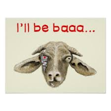 funny goat posters zazzle