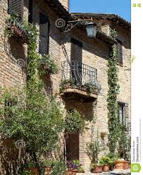 home various flowers in pots design italian courtyards stock