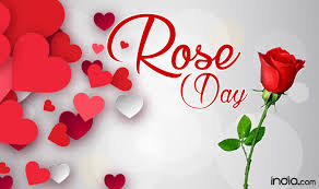 valentines day roses week list 2017 day propose day day