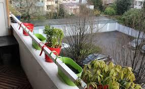 topfpflanzen balkon tipps für gardening so machen sie balkon und topfpflanzen