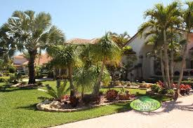 Tropical Landscaping Ideas by Tropical Front Yard Landscaping Ideas With Palm Trees Backyard