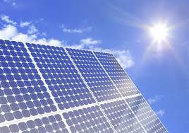 Bridgeville Based Solar Maid Battles Squirrels Pigeons And Moss