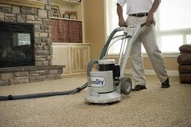 Capture Carpet And Rug Dry Cleaner Dry Rug Cleaner Roselawnlutheran