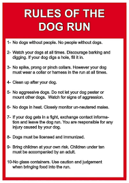 dog run ideas improve your dog u0027s time while in the run