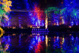 enchanted forest of light tickets the enchanted forest stunning sound and light show opens its doors