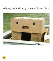 Cardboard Box Meme - when you find out you a cardboard box boxing meme on sizzle
