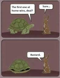 Tortoise Meme - the real hare and tortoise meme guy