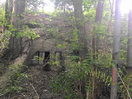 tunnel residents want to reopen naperville u0027cow tunnel u0027 for pedestrian