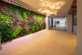 fuse cambridge brings nature indoors with a living green wall