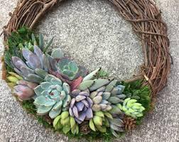 succulent wreath succulent wreath etsy