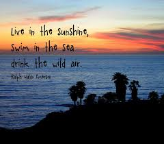 Live In The Sunshine Night Quote Inspiring Quotes and words In Life