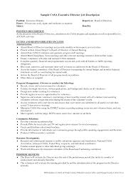 report template for board of directors best business template