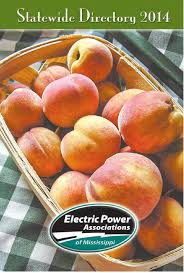 electric power association of mississippi statewide directory by