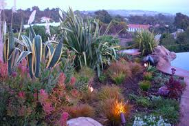 Drought Friendly Landscaping by Drought Tolerant Landscaping Los Angeles Garden Of Eva