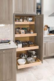 Kitchen Cabinet Shelving Ideas Grey Quartz Countertops Wooden Kitchen Cabinet Organizer Pantry