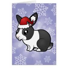 dutch rabbit greeting cards zazzle co uk