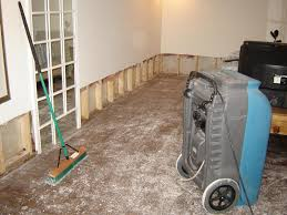 tampa water damage cleanup repair and removal dry wizard restoration