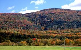 Vermont leisure travel images 12 best vermont fall foliage locations travel leisure jpg%3