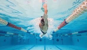 inside swimming pool professional man swimmer inside swimming pool underwater