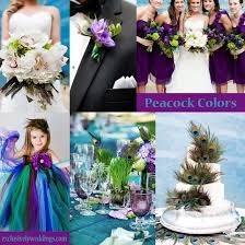 peacock wedding your wedding colors peacock exclusively weddings