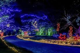Botanical Gardens Lights Norfolk Botanical Gardens Lights Webzine Co