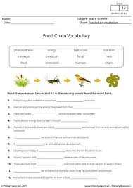 best 25 food chain activities ideas on pinterest food chains