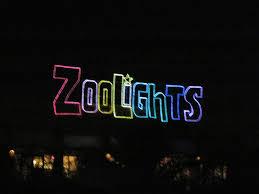 Phoenix Zoo Lights by Family Through Adoption