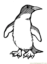 she ra coloring pages christmas penguin coloring pages clipart panda free clipart images