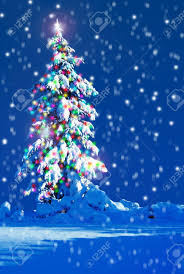 christmas tree outside images u0026 stock pictures royalty free