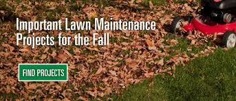 lawn care products and maintenance lawn tips scotts