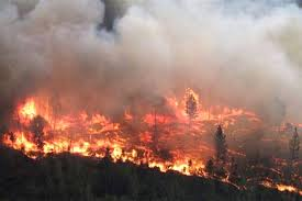 Wildfire Bc Tracker by Farmland Reforms Ahead For Ndp Government Comox Valley Record