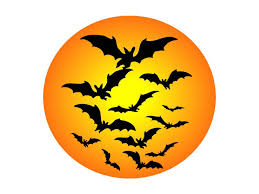 scary bat pictures free download clip art free clip art on