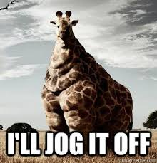 Drunk Giraffe Meme - page 1 of comments at giraffes hate playgrounds